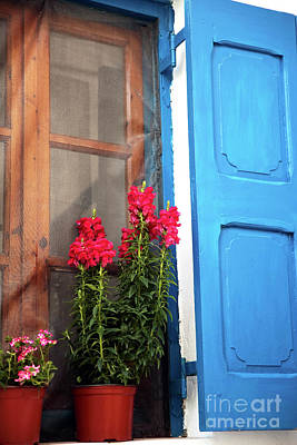 Photograph - Red Flowers In The Window by John Rizzuto