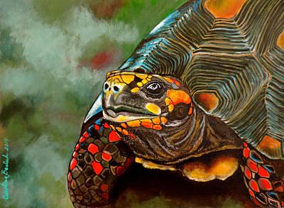 Red-footed Tortoise Original by Carolina Bertsch