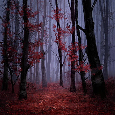 Yellowstone Digital Art - Red Forest 2 by Bekim Art