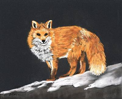 Gaze Painting - Red Fox by Anastasiya Malakhova
