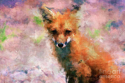 Wall Art - Digital Art - Red Fox  by Claire Bull