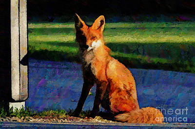 Red Fox Digital Art - Red Fox In The Evening by Mary Machare
