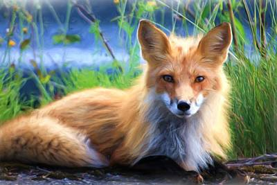 Painting - Red Fox  by Joy of Life Art Gallery