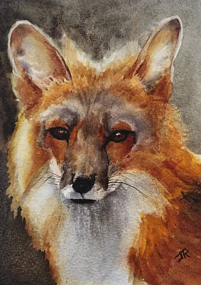 Painting - Red Fox by June Rollins