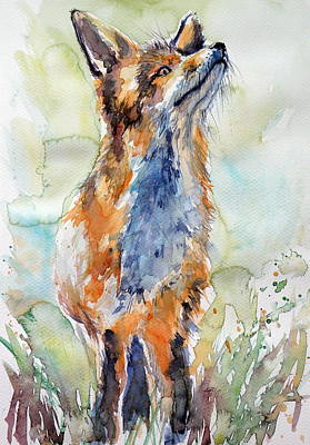 Red Fox Painting - Red Fox Listening by Kovacs Anna Brigitta