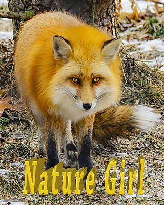 Photograph - Red Fox Nature Girl by LeeAnn McLaneGoetz McLaneGoetzStudioLLCcom