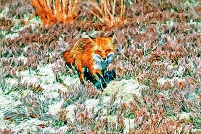Fox Digital Art - Red Fox On Beach by Geraldine Scull