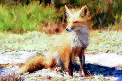 Fox Digital Art - Red Fox Paint by Geraldine Scull