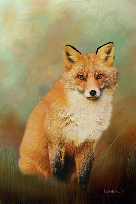 Painting - Red Fox - Painted by Ericamaxine Price