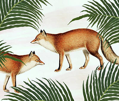 Red Fox Pair Art Print