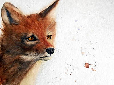 Painting - Red Fox by Ruth Trinczek