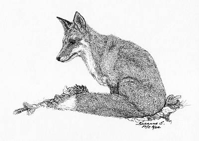 Drawing - Red Fox by Suzanne McKee