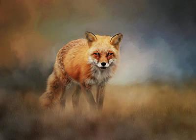 Animals Digital Art - Red Fox In Foggy Landscape by Diana Van Tankeren
