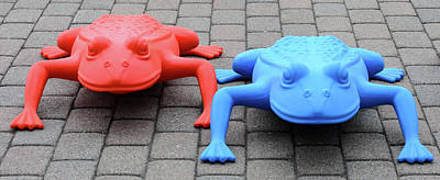 Photograph - Red Frog Blue Frog by Stewart Helberg