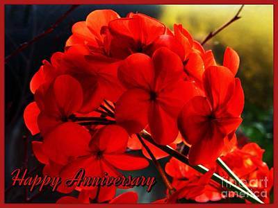 Photograph - Red Geranium Anniversary Greeting by Joan-Violet Stretch