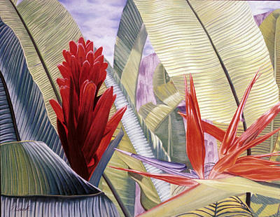 Red Ginger And Bird Of Paradise Art Print by Stephen Mack