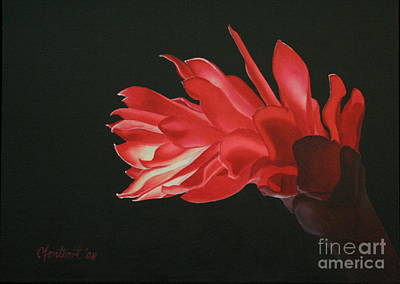 Red Ginger Art Print by Christine Fontenot