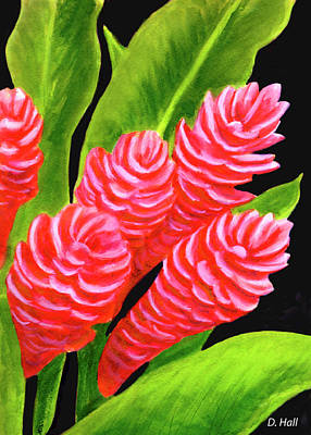 Red Ginger Flowers #235 Art Print by Donald k Hall