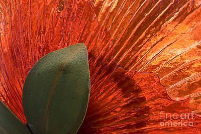 Red Glass Flower Art Print by Tim Hightower