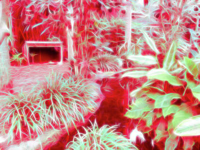 Photograph - Red Glow Beautiful Garden by Aimee L Maher Photography and Art Visit ALMGallerydotcom