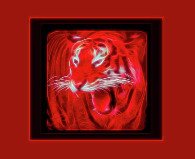 Photograph - Red Glow Portrait Of A Tiger by Aimee L Maher ALM GALLERY