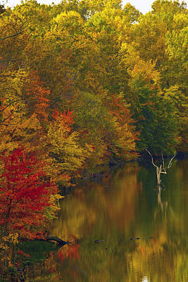Seneca Lake Photograph - Red Gold And Green by Edward Kreis