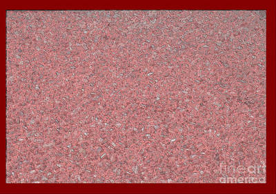 Digital Art - Red Gravel Paint by Donna L Munro