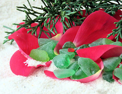 Photograph - Red Green And White by Janice Drew