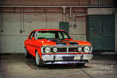 Photograph - Red Gtho Falcon by Stuart Row