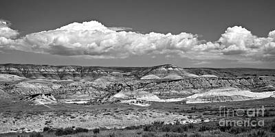 Photograph - Red Gulch, Wy Bw by Chalet Roome-Rigdon