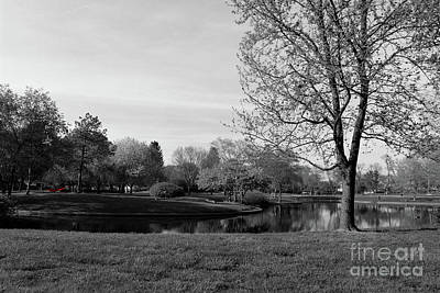 Photograph - Red Hammock At Franklin Park Black And White by Karen Adams