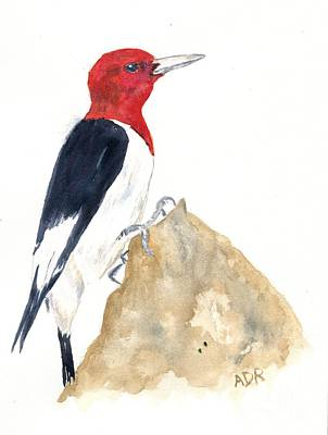 Painting - Red-headed Woodpecker by Andrea Rubinstein
