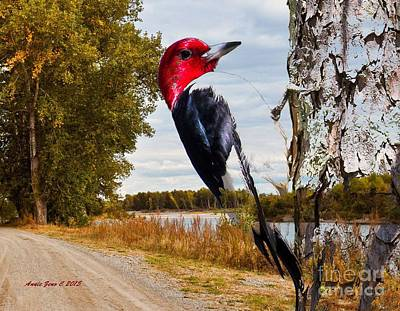 Photograph - Red Headed Woodpecker In Wilderness by Annie Zeno