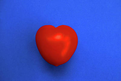 Photograph - Red Heart Tomato On Blue by Nareeta Martin
