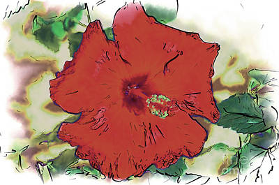 Digital Art - Red Hibiscus Bloom by Kirt Tisdale