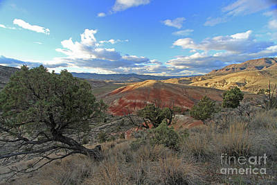 Central Oregon Photograph - Red Hill by Gary Wing