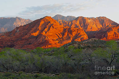 Photograph - Red Hills by Dennis Galloway