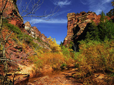 Photograph - Red Hills Landscape, Subway, Zion Np by Alan Socolik
