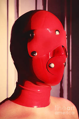 Photograph - Red Hood by William Langeveld