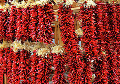 Photograph - Red Hot Chilis by Diana Angstadt