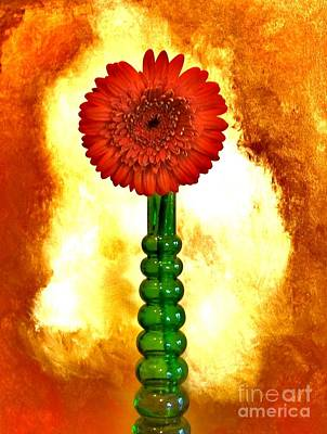 Gerber Daisy Photograph - Red Hot Gerber by Marsha Heiken