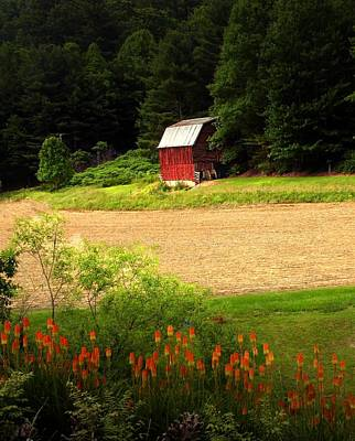 Photograph - Red Hot Poker Barn by Joe Duket