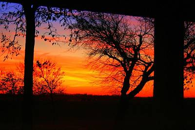 Photograph - Red Hot Sunset by Julie Lueders