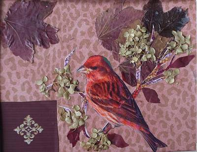 Painting - Red House Finch by Patricia Voelz