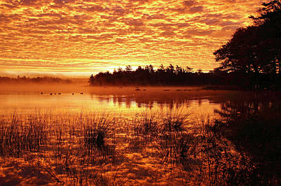 Photograph - Red In The Morning by Gary Corbett