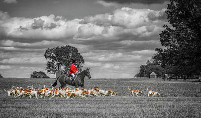 English Fox Hunting Photograph - Red Jacket And Hounds by Larry Helms