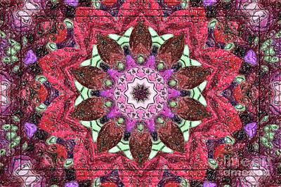 Digital Art - Red Kaleidoscope Color Pencil by Donna L Munro