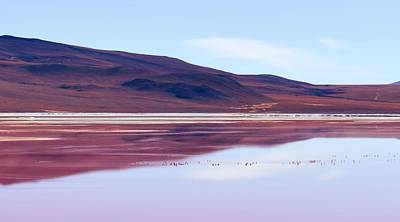 Photograph - Red Lagoon  - Laguna Colorada by Sandy Taylor