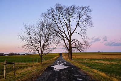 Photograph - Red Lane With Purple Sky by Tana Reiff