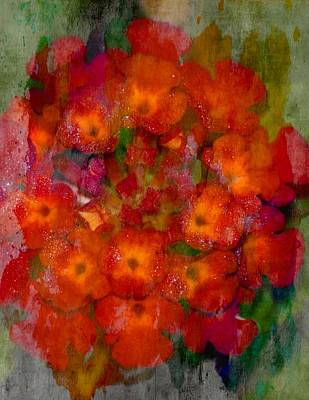 Photograph - Red Lantana by Sheri McLeroy